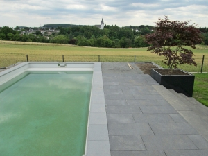 Wilczek-Swimmingpool-mit-Ausicht
