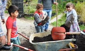 Wilczek-Junge-Gärtner