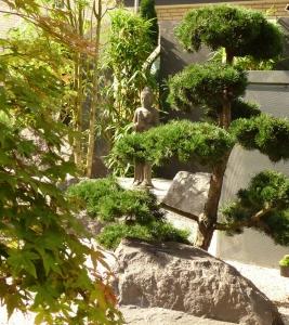 Bonsai-im-ZenGarten