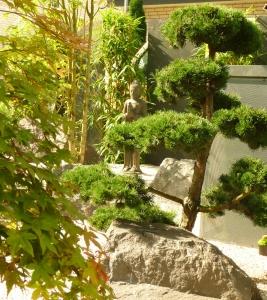 Bonsai-Zen-Garten