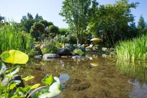 Gartenbiotop