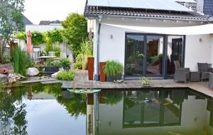 Wassergarten rund ums Haus