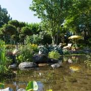 Idyllische Gartenlandschaft mit Teich